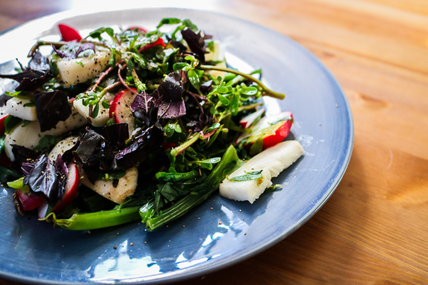 Simple Summer Salad with Purslane, Radish, and Turnip